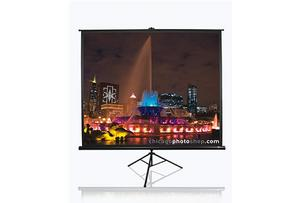 ES ELITE SCREENS T99UWS1 178x178cm - AGEMcz